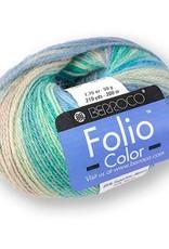 Berroco Berroco Folio Color SALE REGULAR $10-