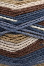 Universal Yarn Universal Deluxe Stripes 307 TIMBER