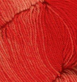 Araucania Huasco Sock Kettle Dye 1009 SCARLET