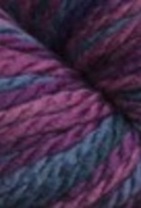 Cascade Cascade 128 Superwash Multi 120 BERRY
