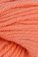 Cascade Cascade 220 Superwash Aran 1996 MELON