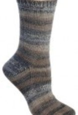 Berroco Berroco Comfort Sock 1814 DUNEDIN