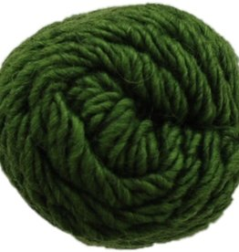 Brown Sheep Brown Sheep Lambs Pride Worsted M 191 KIWI