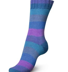 Regia Regia PairFect 4 ply Rainbow 1733 BLUE CHARCOAL PURPLE