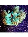 Coral - Elegance (Sm)