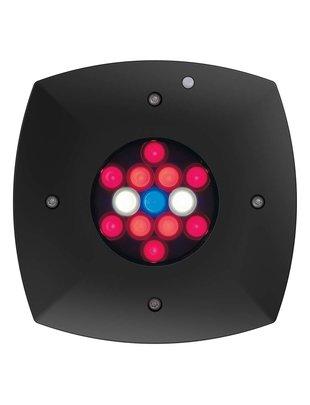 Aqua Illumination Prime Fuge LED Light Fixture (Black) - Aqua Illumination (Clearance)