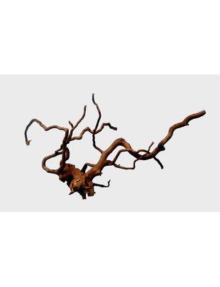 """Tideline Spider Wood - Medium (15""""- 20"""")"""