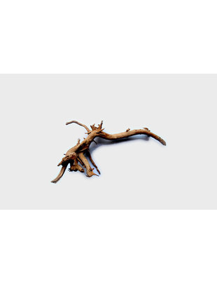 """Tideline Spider Wood - Small (10""""- 15"""")"""