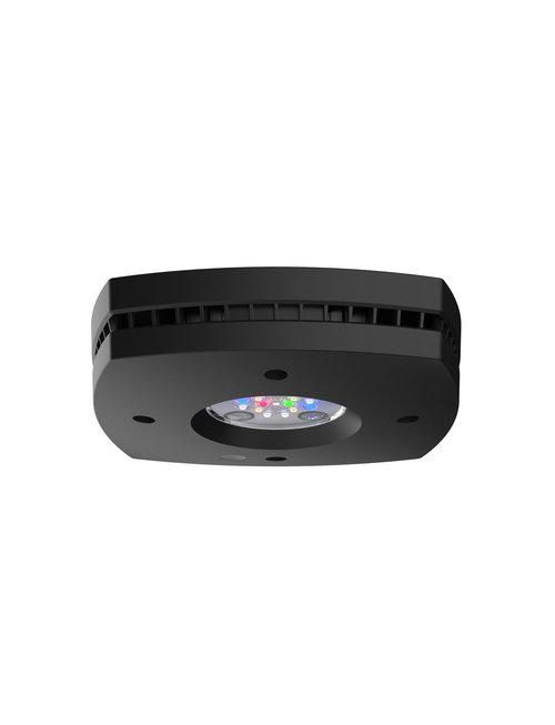 Aqua Illumination Prime 16HD Fixture (Black) - Aqua Illumination