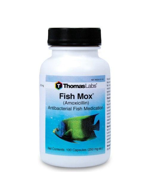 Fish Mox 250mg (100 ct) ThomasLabs