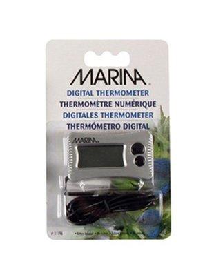 Digital Thermometer - Marina