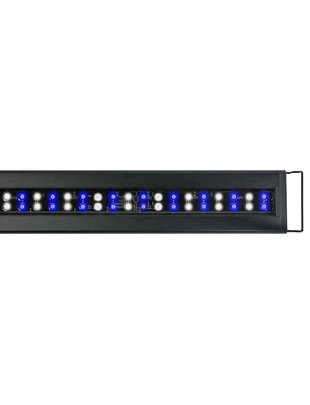 Current Orbit Marine IC LED Strip Light Accessory (No Controller) Current