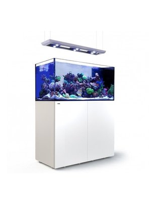 Red Sea Reefer Peninsula Deluxe 500 LED Reef Aquarium System (105G, White) Red Sea