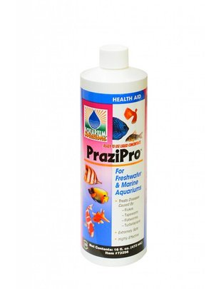 Hikari Hikari PraziPro Parasite Treatment (16oz) Glass Aquatics