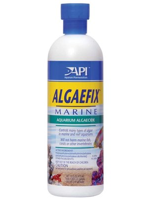 API API Algaefix Marine Algae Control Solution (16oz) Glass Aquatics