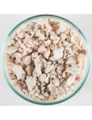 CaribSea Florida Crushed Coral Reef Sand (40lb) CaribSea