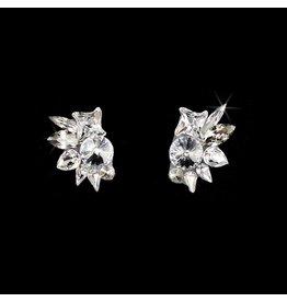 Crystal, Silver Shade