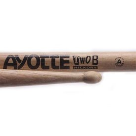 Ayotte Ayotte Two B Hickory Wood Tip drumsticks