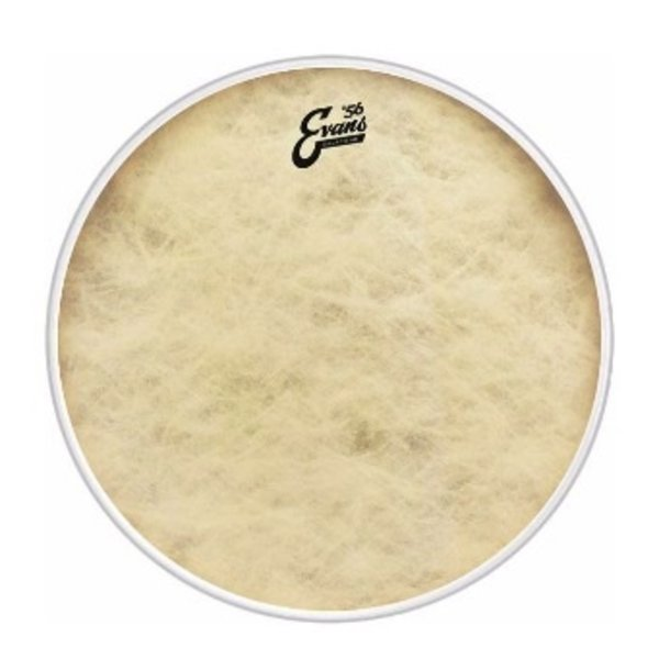 """Evans Evans EQ4 Calftone 16"""" Bass Drumhead"""