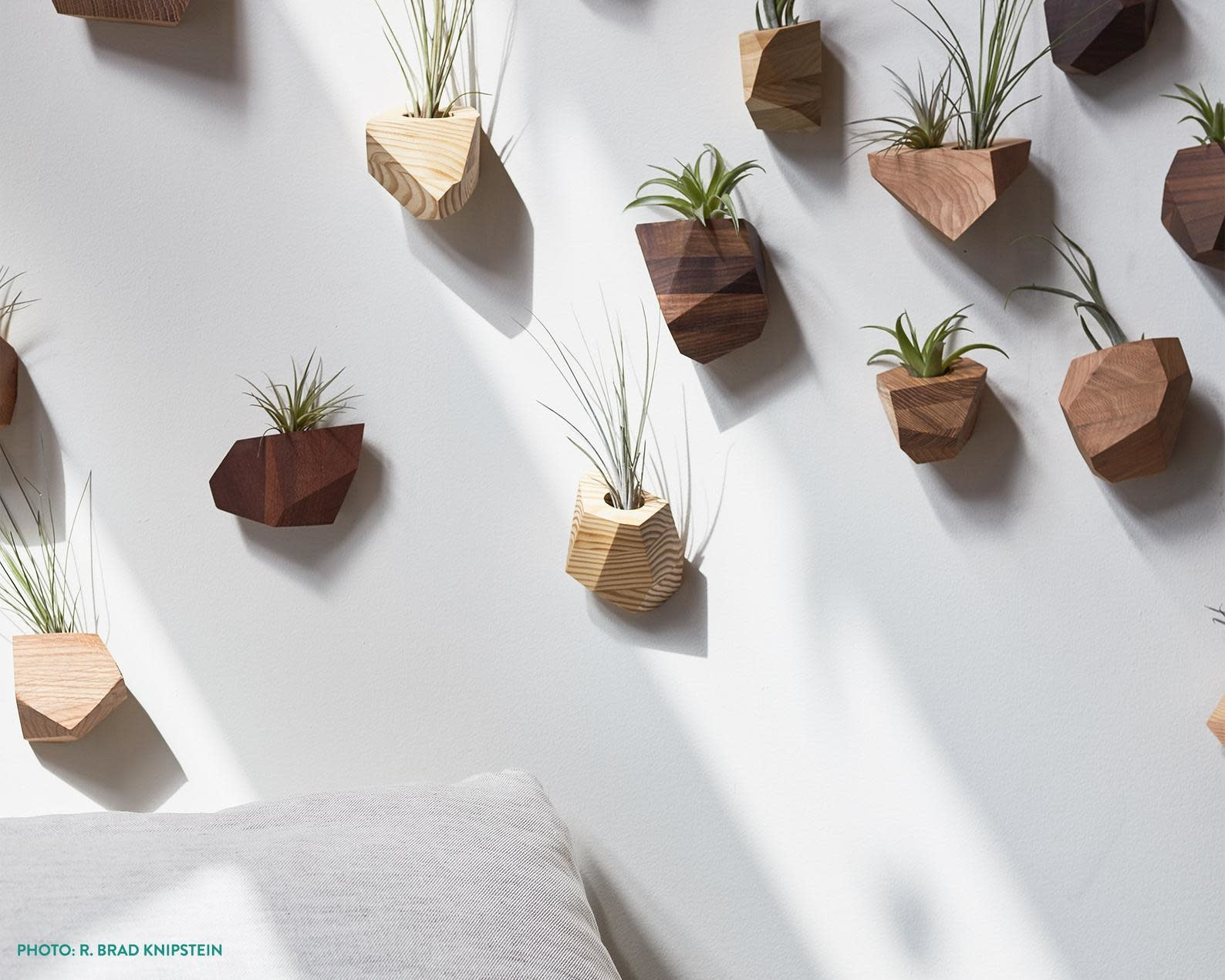 Untitled Co. Untitled Co. - Geometric Wood Air Planter -