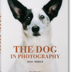 Taschen The Dog in Photography 1839–Today
