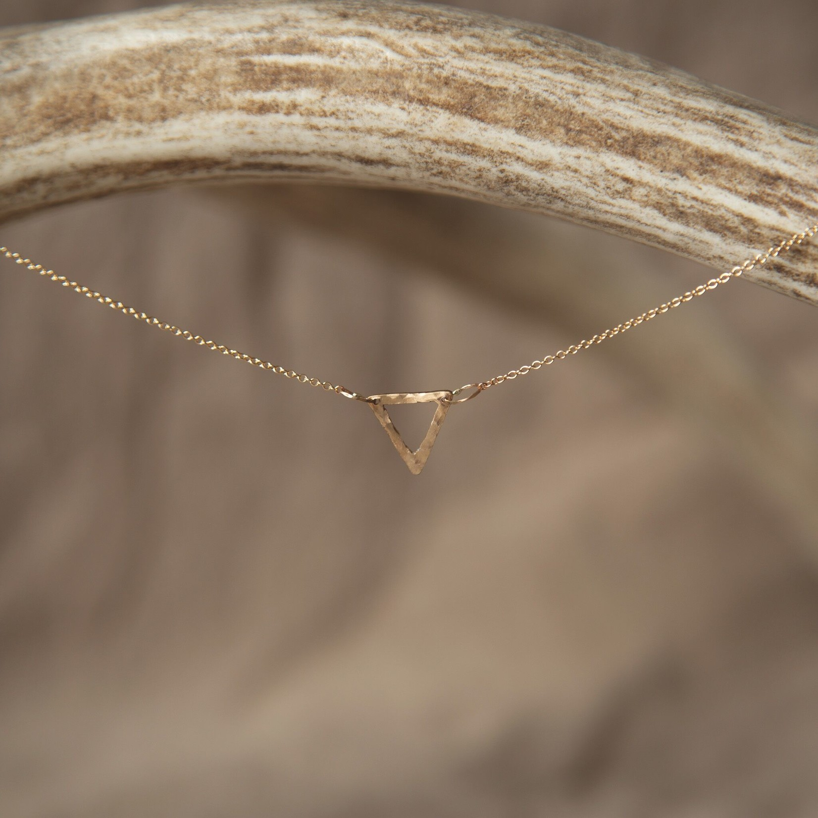 Lonewolf Collective Equilateral Lonewolf Collective Equilateral Necklace (14k Gold Fill)