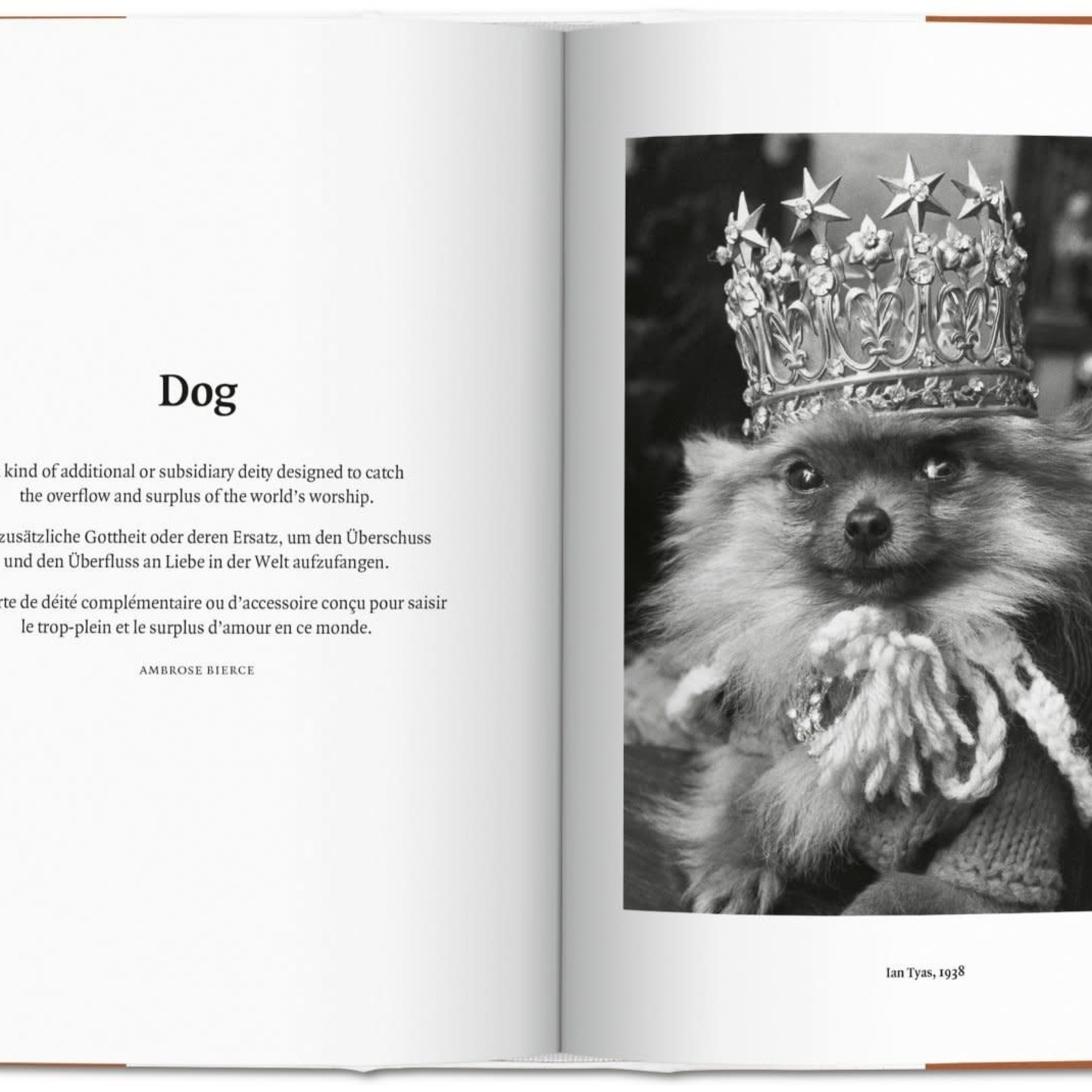 Taschen The Dog in Photography 1839–Today by Taschen