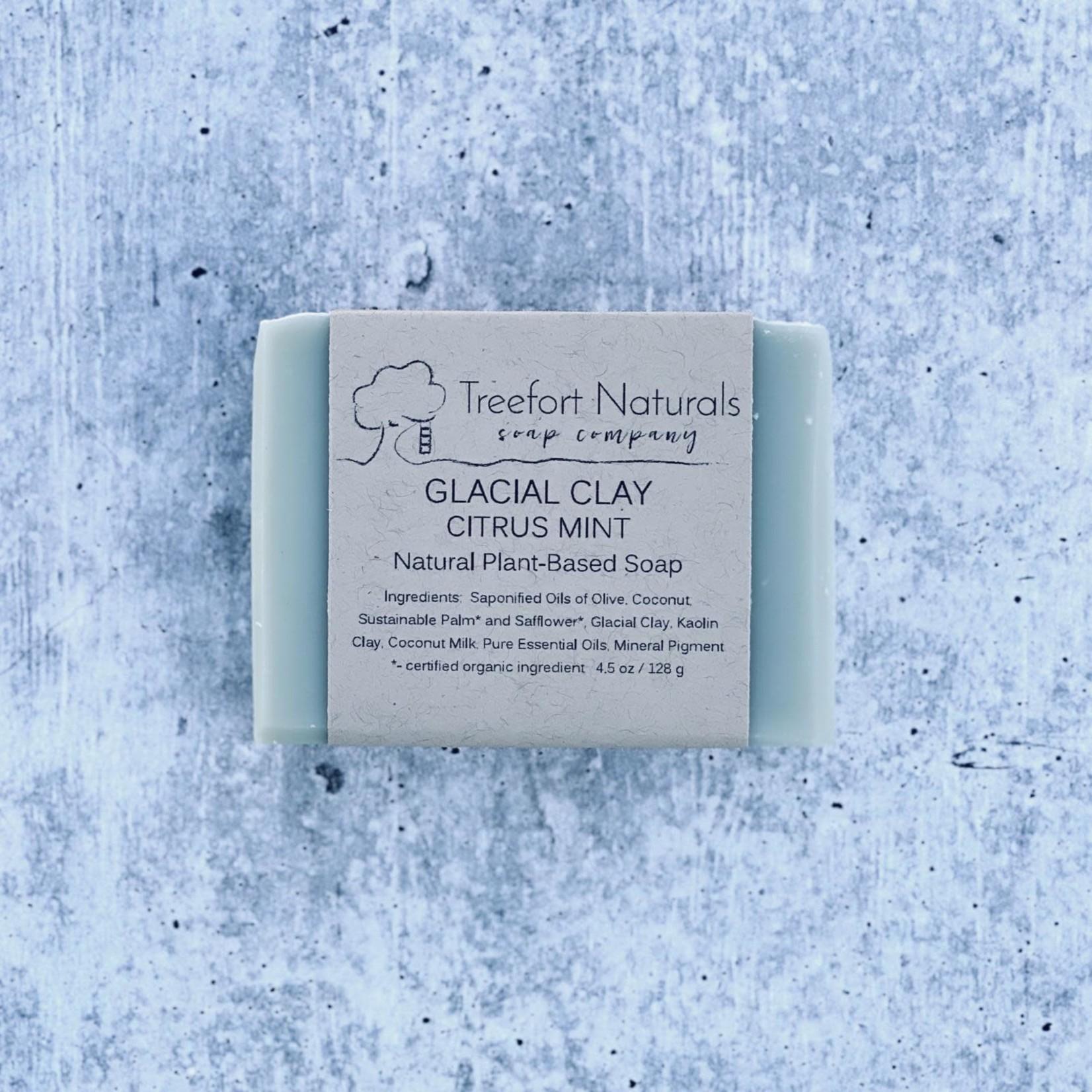 Treefort Naturals Treefort Naturals Glacial Clay Citrus Mint Soap