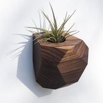 Untitled Co. Untitled Co. Georgia Air Plant Holder Walnut