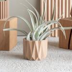 Minimum Design Minimum Design Mini Indoor Planters Origami Natural