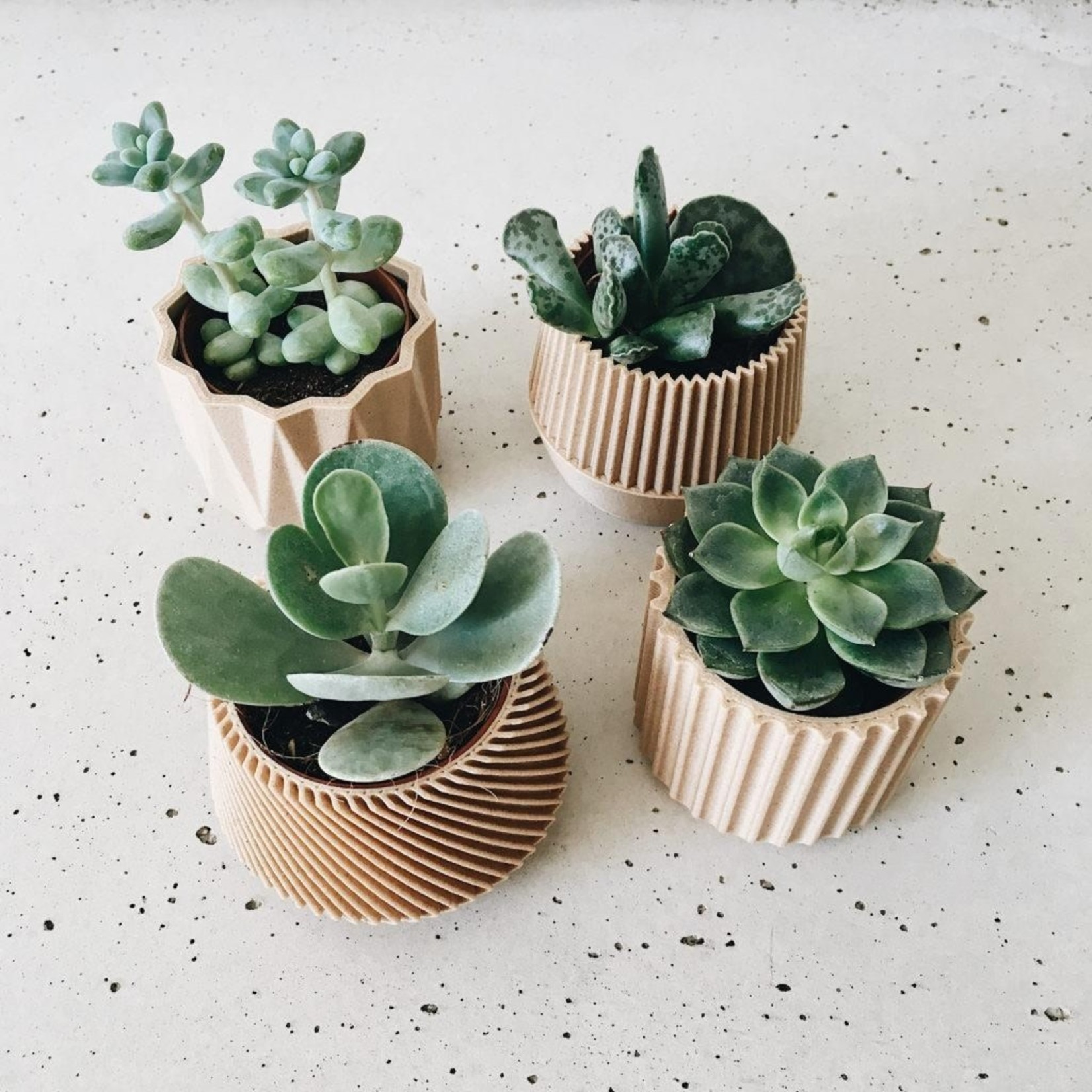 Minimum Design Minimum Design Mini Indoor Planters Kobe Natural