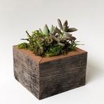 """Alibi Interiors Alibi Interiors 2"""" x 2"""" Reclaimed Wood Onesie Planter Box"""