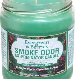 SMOKE ODOR Candle Evergreen & Berries
