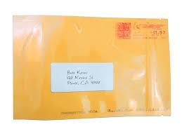 Lg Stealth Bag Envelope