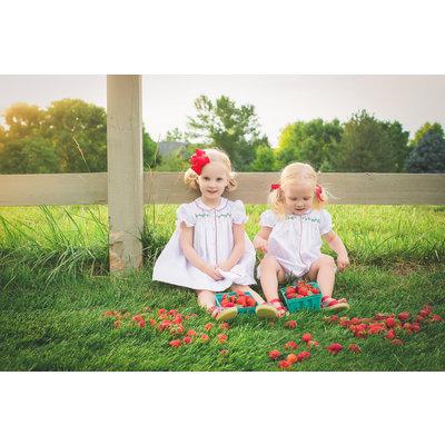 The Proper Peony Sallie Strawberry Dress