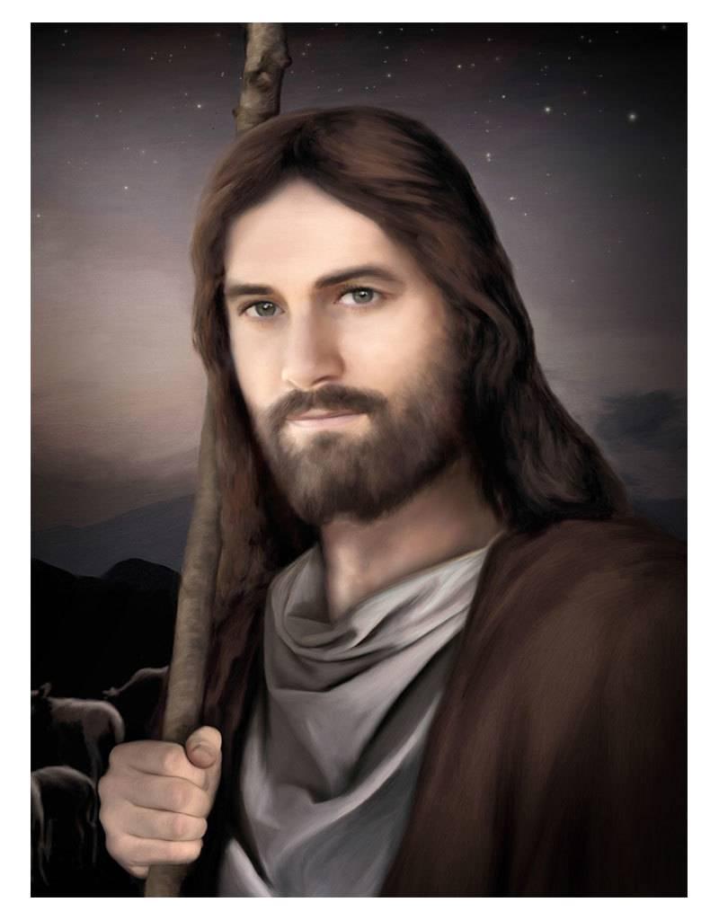 "Brent Borup Card - Vigilant Shepherd, 3""x4"""
