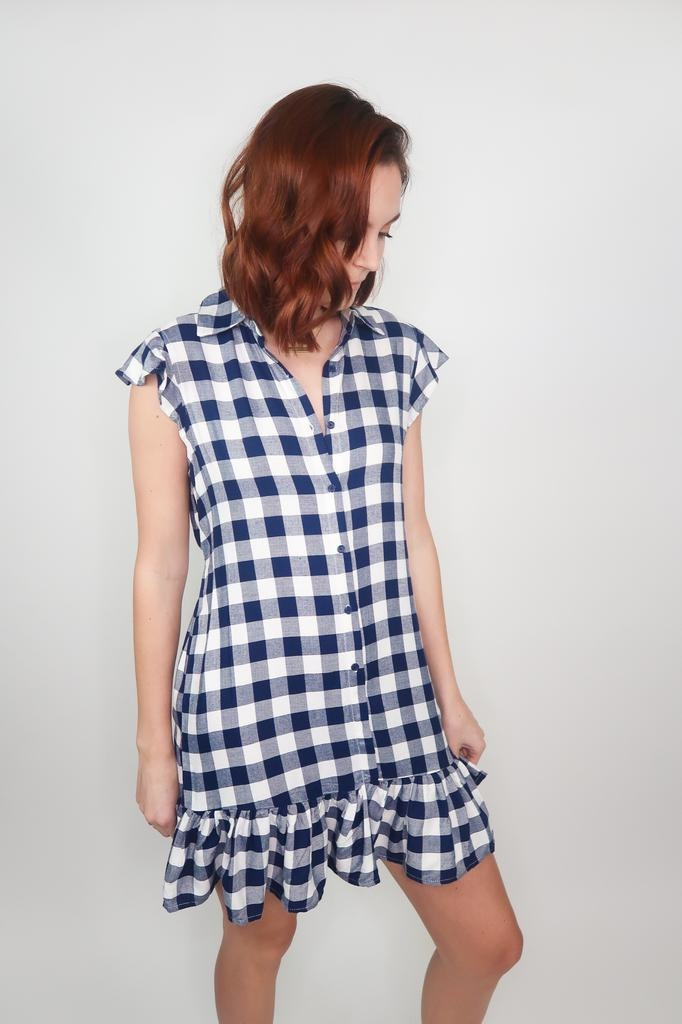 BB Dakota Check Please Flannel Tank Dress