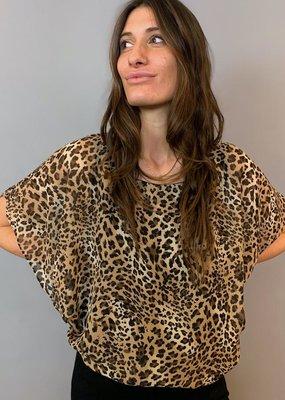 Last Tango Leopard Print Chiffon Batwing Top