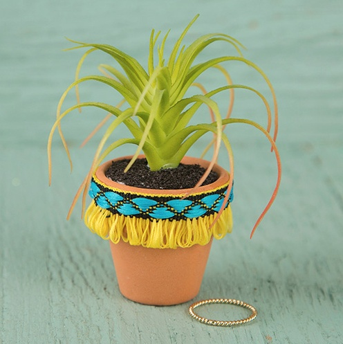 Natural Life Succulent Yellow Fringe