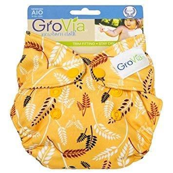 Shell Newborn AIO, Sweetgrass