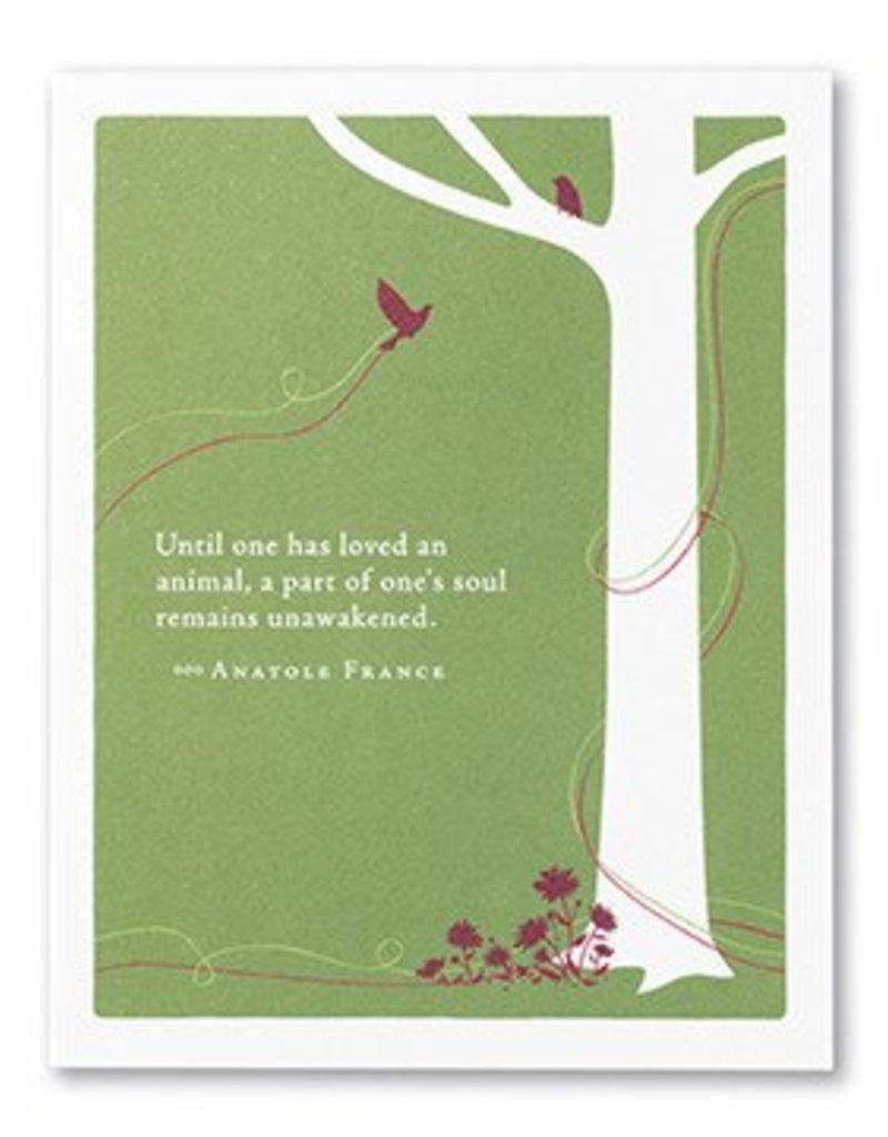 Pet Sympathy Card- 4544