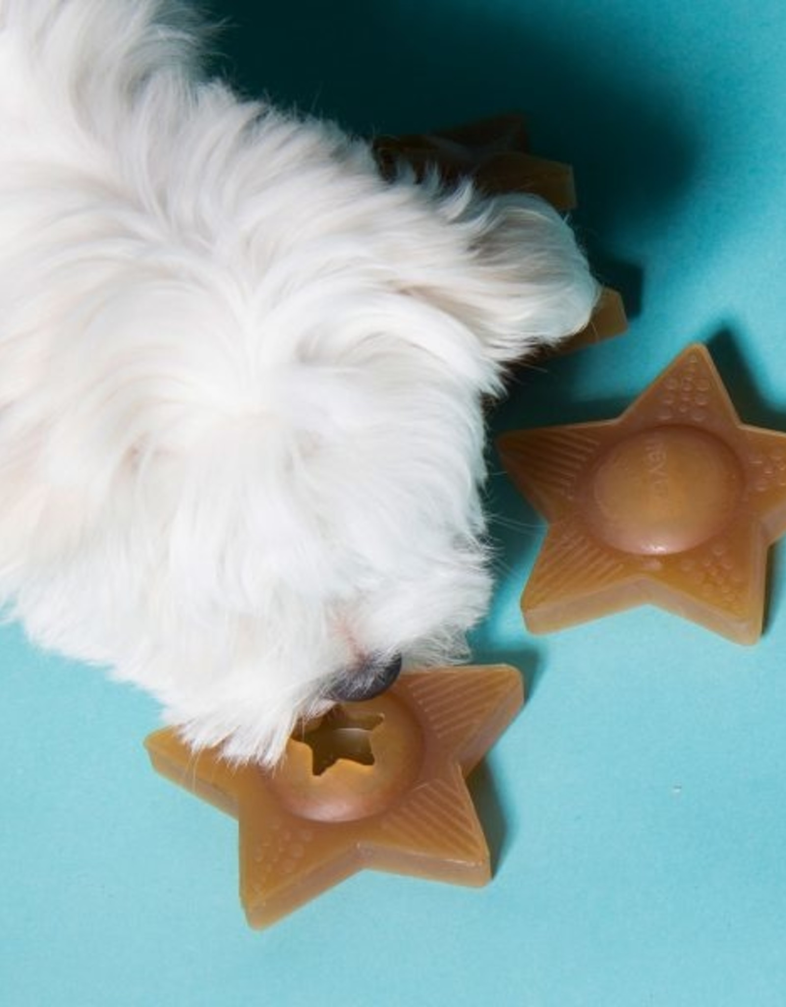 Hevea Star Treat Activity Toy for Dogs