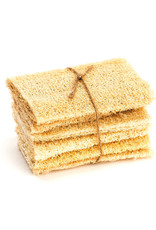 Brush with Bamboo Compostable Loofah Scrubber- Pack of 6
