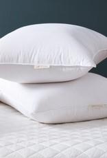 Humane Down Pillow Standard