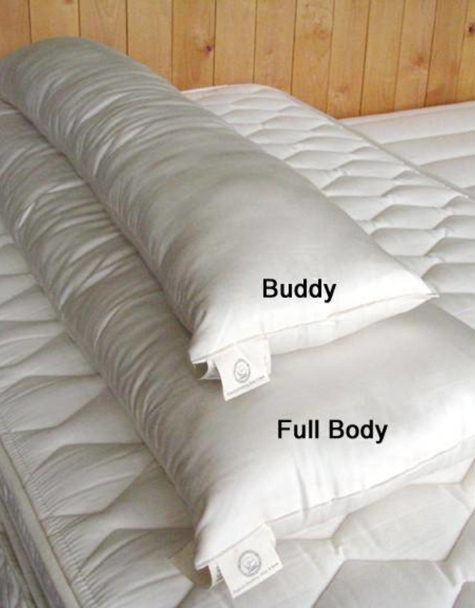 """Buddy"" Pillow with Cover"