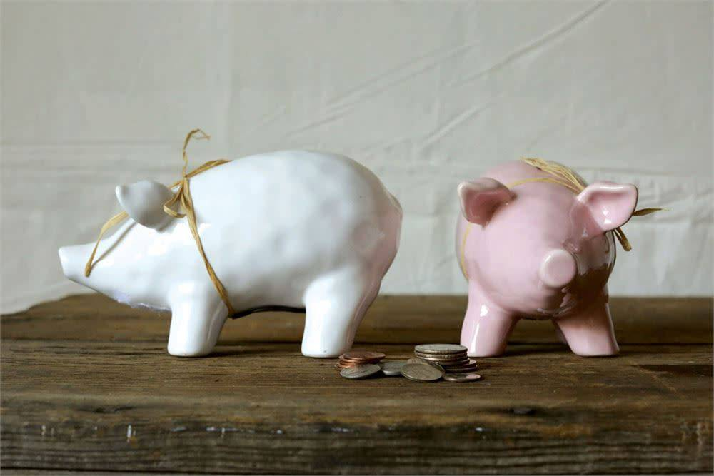 Fleurish Home Ceramic Piggy Bank (choice of pink or white)