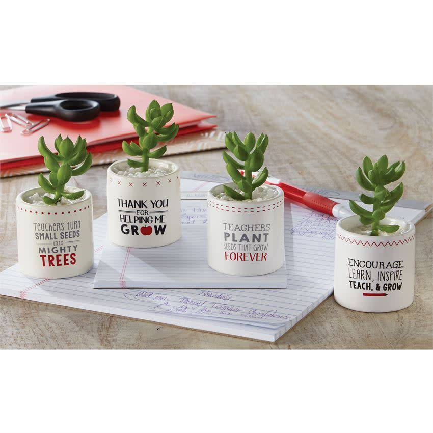 Mudpie ARTIFICIAL SUCCULENT POT W/ TURN SENTIMENT