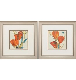 Fleurish Home Gradiflorum 12x12 (Choice of 2 Images)