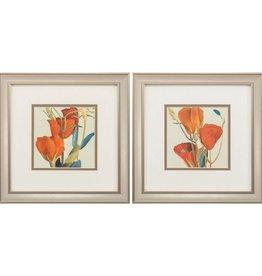 Fleurish Home Gradiflorum 12x12 (Choice of 2 Images)