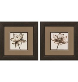 Fleurish Home Sepia Lotus 13x13 (Choice of 2 Images)